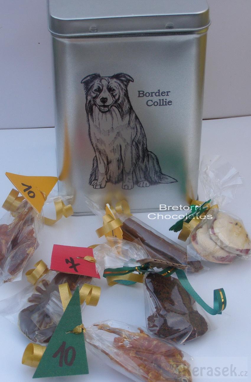 Border kolie - dóza s pamlsky pro psy 30 kusů pamlsků