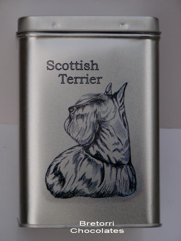 Doza - skotský teriér