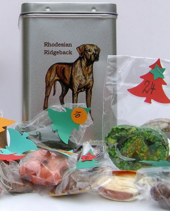 Ridgeback - adventní kalendář pro psy 33 kusů pamlsků / 550 g